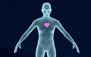 humano en wireframe con el corazón brillante