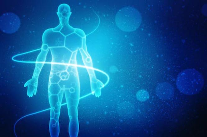 Un cuerpo translúcido, unido con una espiral azul