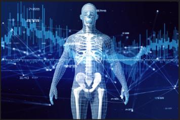 Un esqueleto con unas métricas encima, indicando que todo está conectado