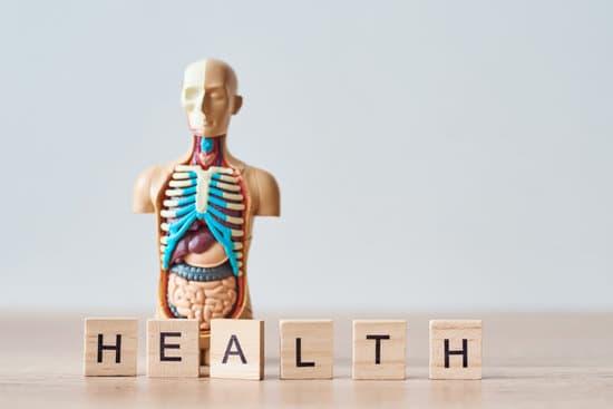 esqueleto con la palabra salud en inglés